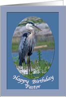 Pastor's Birthday Card with Great Blue Heron card