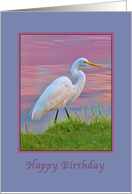 Birthday, Great Egret at Dawn, Religious card
