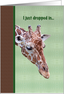 Thinking of You Card with Inquisitive Giraffe card