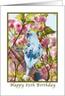 85th Birthday, Blue Parakeet and Flowers card