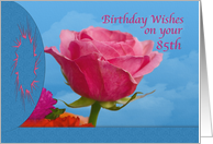 Birthday, 85th, Pink Rose card