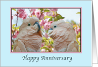 Anniversary, Wedding, Parrots and Crab Apple Blossoms card