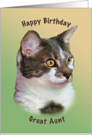Great Aunt, Birthday, Golden-eyed Cat, Wishes card