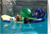 Pool Pawty card