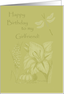 Happy Birthday to my Girlfriend! card