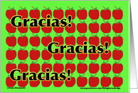 Teacher Thank You Gracias card