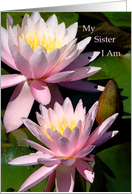 Announcement, Sister, I Am Pregnant, Two Pink Water Lilies With Bud card