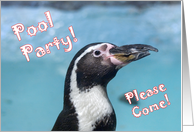 Penguin Pool Party card