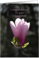 Congratulations Engagement - Pink Magnolia Flower card