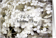 On Our Wedding Day - White Hydrangea Flowers card