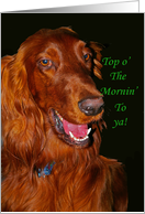 Happy St. Patrick's Day: Irish Setter card