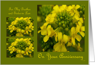 Happy Anniversary brother and sister-in-law: yellow bloom card