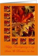 Thanksgiving Sister and Brother-in-Law: leaves card