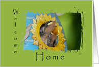 Welcome Home From Pet: birds card