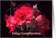 Feliz Cumplea�os - Spanish Happy birthday Card