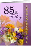 85th Birthday Congratulations Card