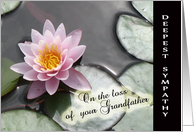 Loss of Grandfather With Deepest Sympathy - Waterlily card