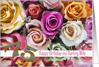 75th birthday to my darling wife roses card