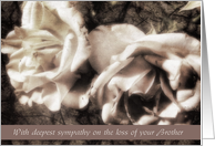 deepest sympathy on the loss of your brother white roses sympathy card