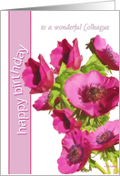 to a wonderful colleague happy birthday pink anemone flowers card