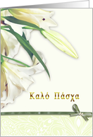 happy easter,Kaló pásha, greek, white lily card