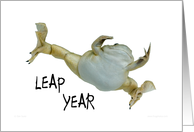 Leap year - blank inside card