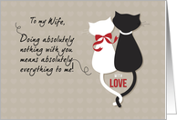 Wife Anniversary, Love Cats card