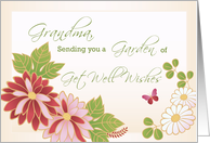 Grandma, Grandmother, Get Well Wishes, Flowers, Butterfly card