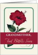 Any Relation Customizable Feel Better Grandmother Flower, Religious card