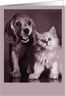 Puppy and Kitten card