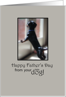 Happy Father's Day from Your Little Dog card