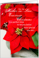Mother-in-Law, Christmas Poinsettia card
