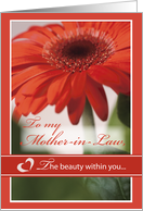 Mother-in-Law Valentine's Day with Red Gerber Daisy Flower, Holiday card