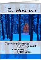 Husband, Christmas, love, trees, woods, snow card