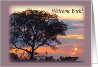 Welcome Back Tree Sunset card