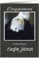 Congratulations on Becoming and Eagle Scout card