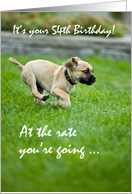 54th Birthday, Puppy Running, Funny card