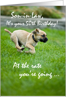 Son-in-Law, 50th Birthday, Puppy Running, Funny card
