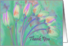 Tulips - Thank You card