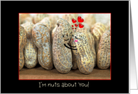 I Love You - pair of peanuts hugging each other card