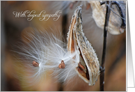 Sympathy with milkweed seed pod card
