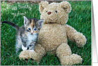 birthday kitten with teddy bear card