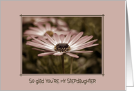 stepdaughter's birthday with daisy in soft vintage card