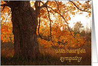 heartfelt sympathy with autumn oak card