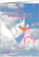 new granddaughter-stork with baby girl in the clouds card