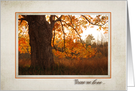sympathy with autumn oak tree for loss of brother card