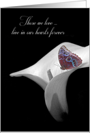 sympathy with butterfly on calla lily card