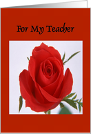 Happy Valentine's Day - For My Teacher card