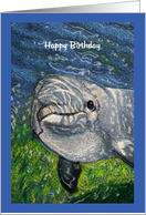 Dolphin Swimming: Happy Birthday To Cool Dude, Kids card