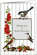 Speedy Recovery: Hand-Drawn Nature Art With Birds and Flowers card